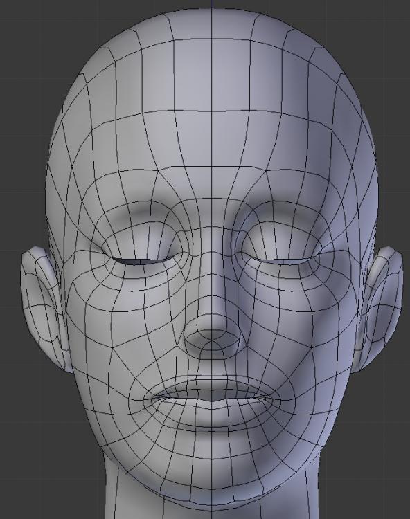 modelFace.jpg