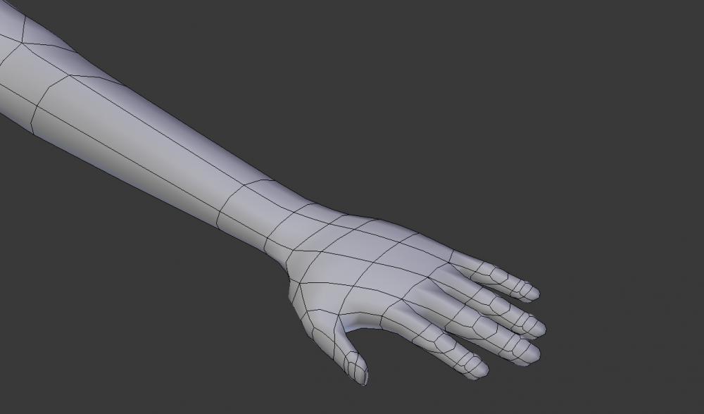 modelHand.jpg