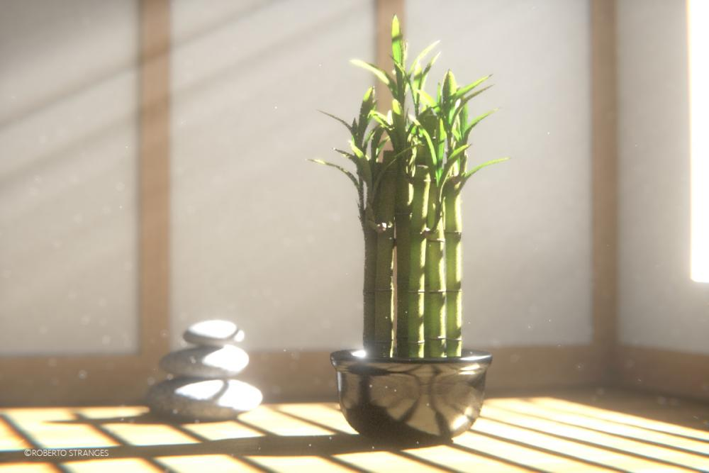 Bamboo Dream copia.jpg