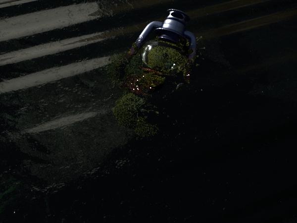 water lanter.JPG