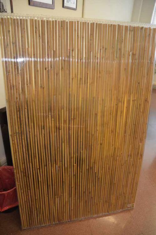 bamboo-in-pellicola.jpg