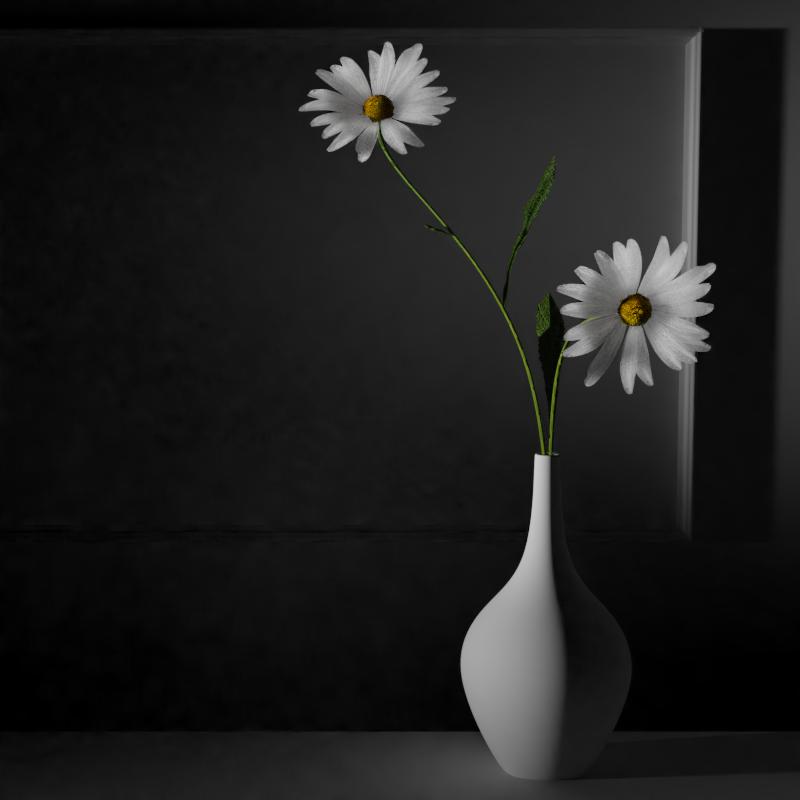 margherita vaso02.png