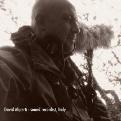 David Aliperti