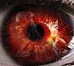 Red eyes80